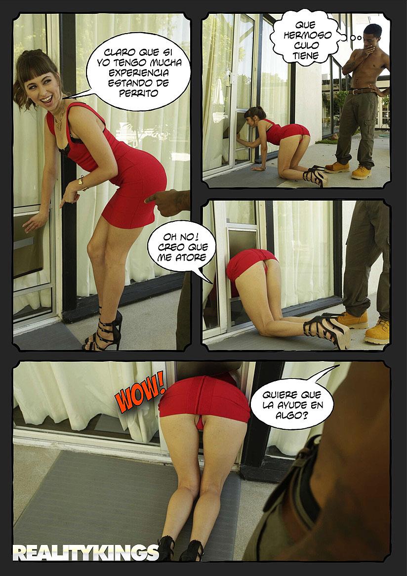 estilo perrito foto-comic pag10